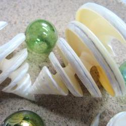 Beach Decor Seashells - Nautical Decor Trocha Specimen Collector Shell, Spiral Cut, 1pc